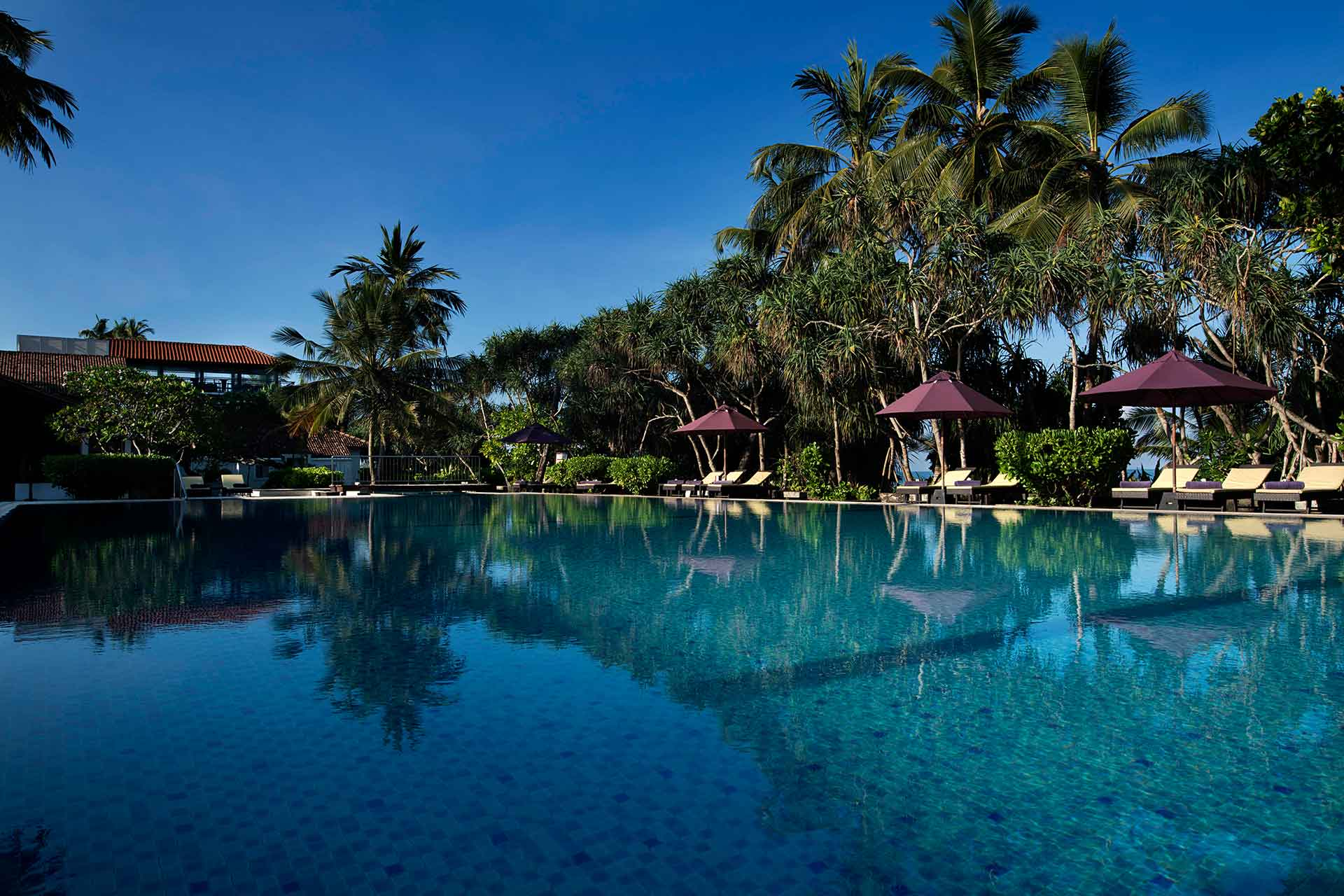 Pool of AVANI Bentota Resort and Spa