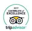 TripAdvisor Award