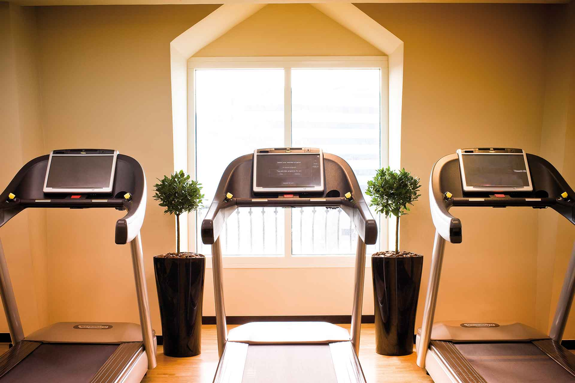 Treadmills of the gym at AVANI Deira Dubai Hotel