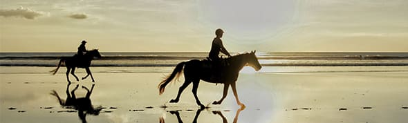 Horse Riding on the beach at AVANI Hua Hin
