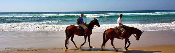 AVANI Pattaya Resort & Spa - Horseback Riding