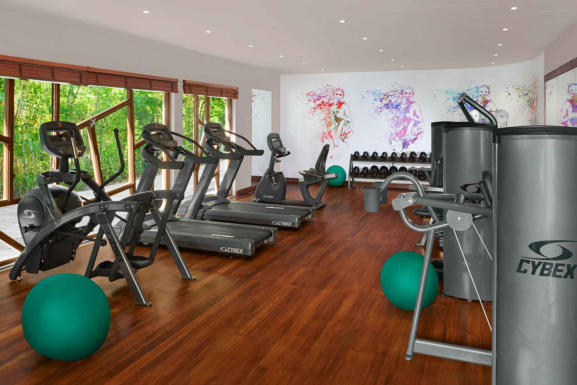Gym with a garden view at AVANI Seychelles